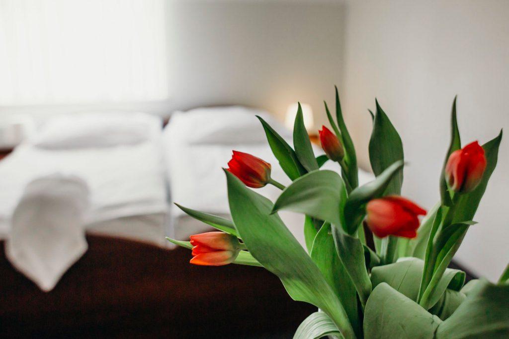 Hotel Villa Leśne Ustronie kwiaty